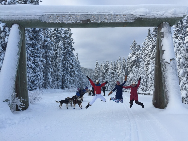 Dog sledding at the Great Divide in Lake Louise, Canada