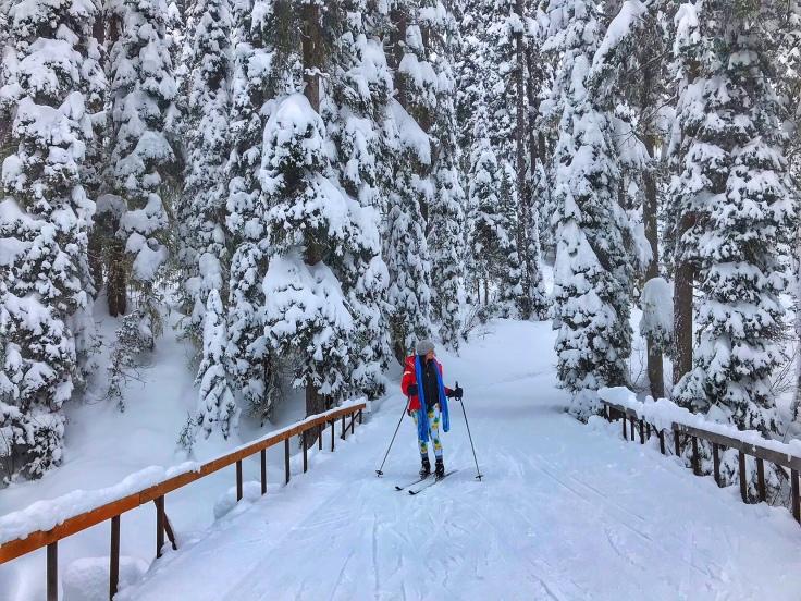 Cross country skiing at Izaak Walton Inn, Essex, Montana
