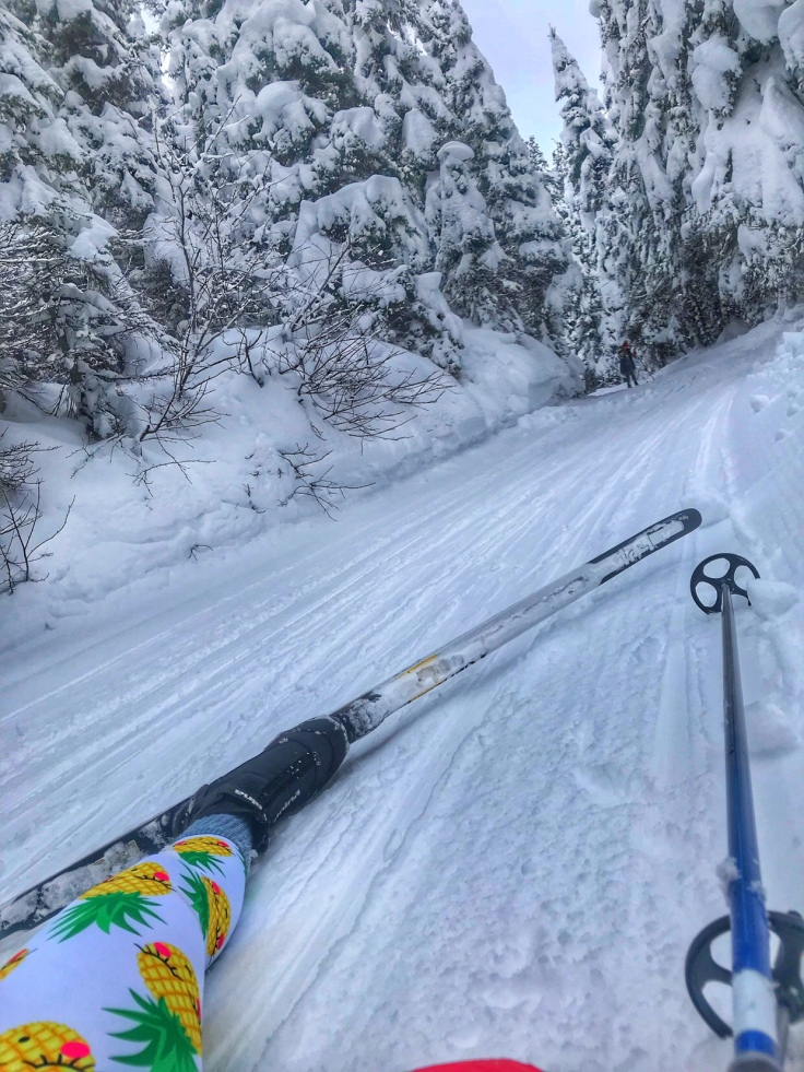 Wipe put cross country skiing, Izaak Walton Inn, Essex, Montana